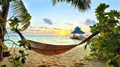hd hintergrundbilder strand tropisch urlaub haengematte