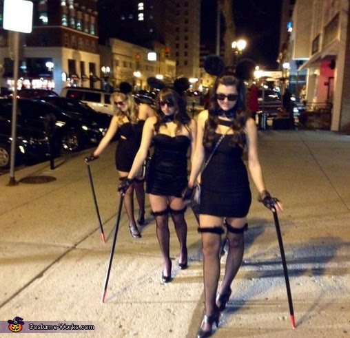 Three Blind Mice Group Costume Photo 610