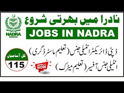 Today New Jobs In Nadra total post 115