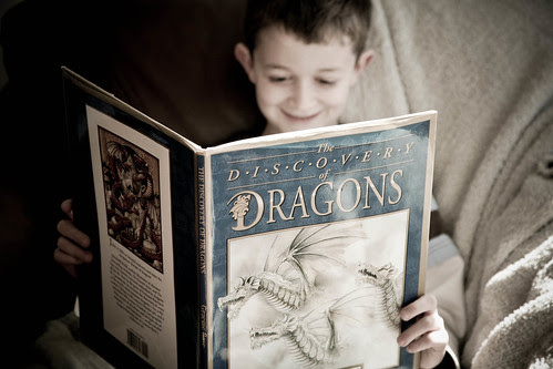 Like a hand in glove:  Boys & Dragons