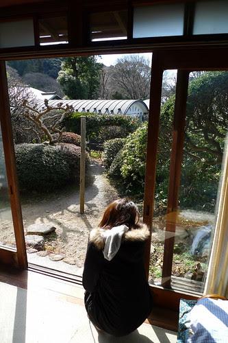 Kelly examines the scenery
