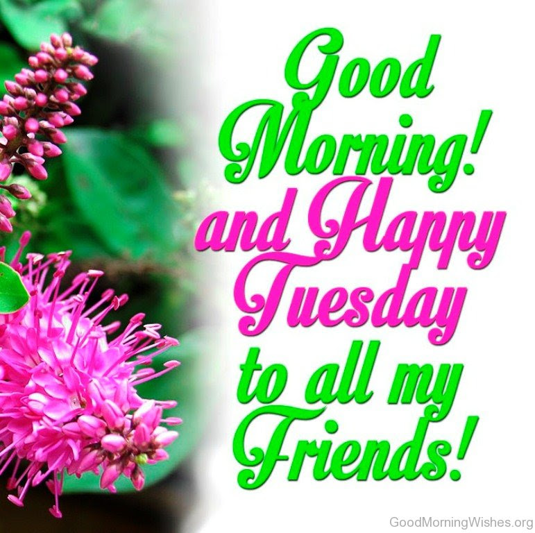 38 Good Morning Wishes On Tuesday