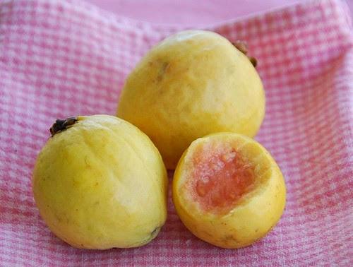 guava bitten