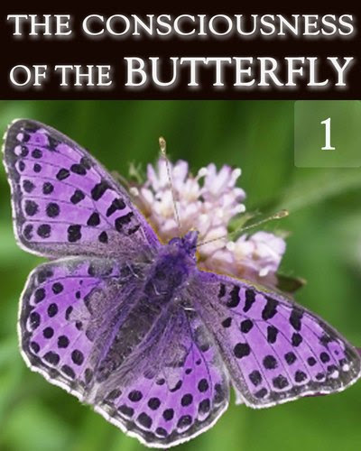 The-consciousness-of-the-butterfly-part-1