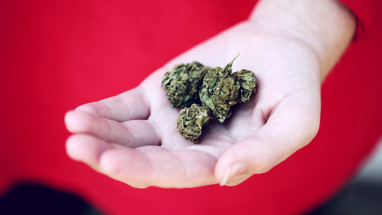 The World Drug Report said many countries saw a rise in the use of cannabis during the coronavirus pandemic.