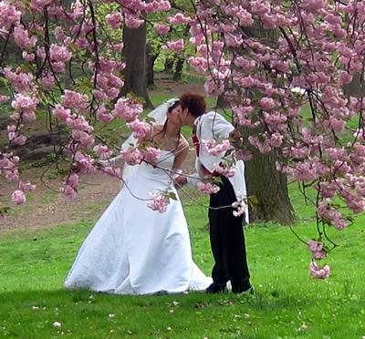 http://axtipititaxi.files.wordpress.com/2011/03/wedding2.jpg