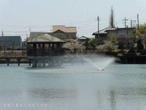 今池親水公園08.JPG
