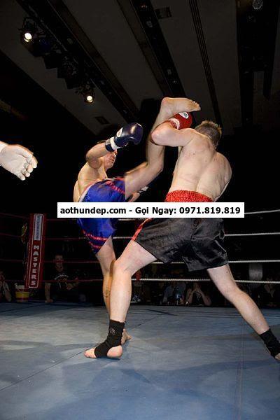 Năm 2007, Muay Thái chính thức thi đấu trong Đại hội Thể thao Đông Nam Á ... tác tỏ lòng biết ơn và cũng được phục vụ việc khởi