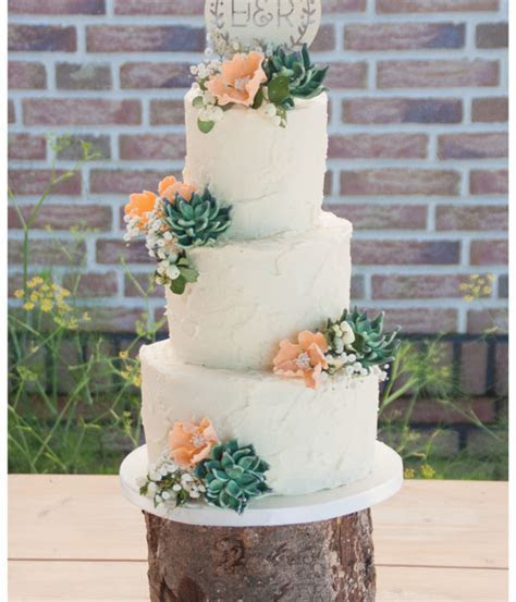 Succulent Cakes Too Pretty To Eat   CakeCentral.com
