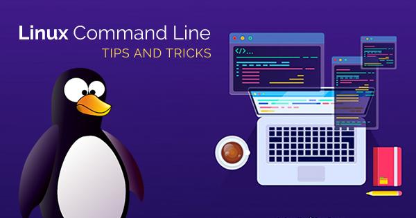 Tổng hợp các lệnh Linux cơ bản