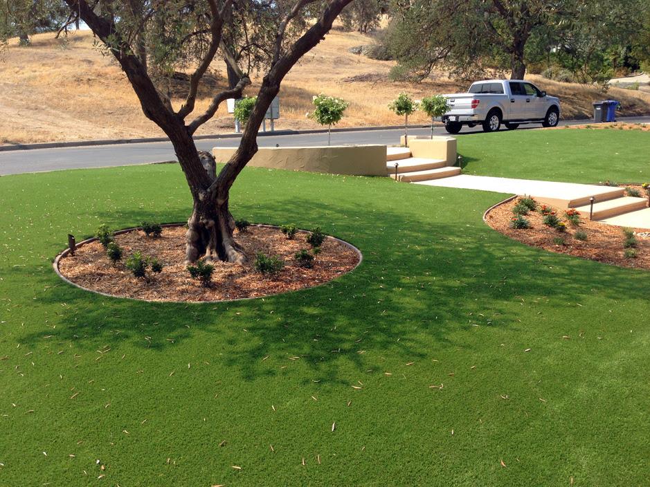Fake Grass Carpet Miami Gardens Florida Landscape Design