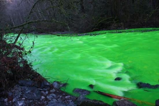 Perierga.gr - Φωσφοριζέ πράσινο ποτάμι