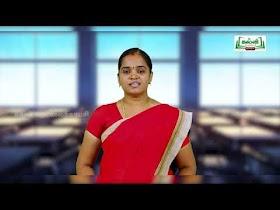 5th English Kalvi TV Bridge Course Work Sheet