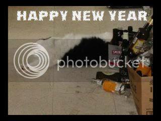 drunkencat