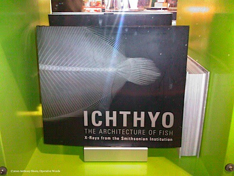 Ichthyo-c.jpg