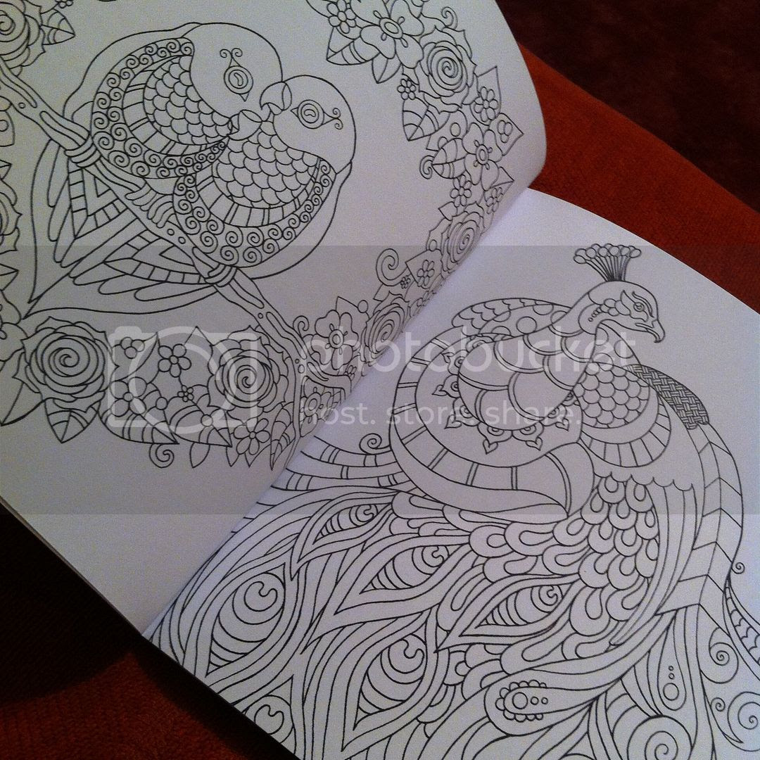 Colour Me Mindful Birds - Example