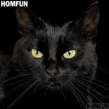 Siyah Kedi Boyama Yorumlar Online Alışveriş Siyah Kedi Boyama