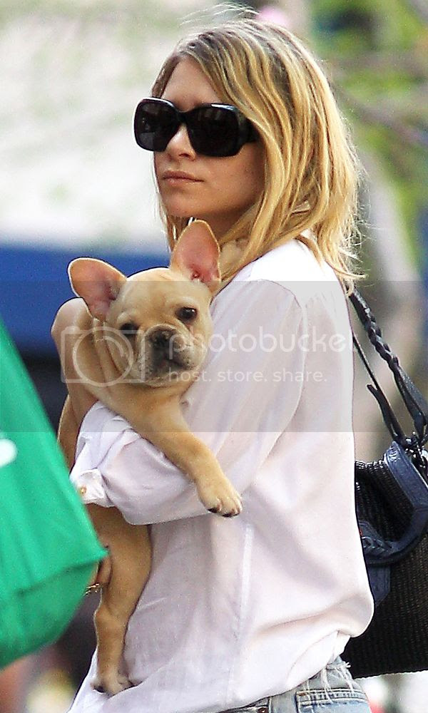 Olsens Anonymous 7 Stylish Shots Of Ashley With Her Dogs