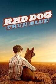 [Film] Red Dog: True Blue 2016 Online Subtitrat in Romana