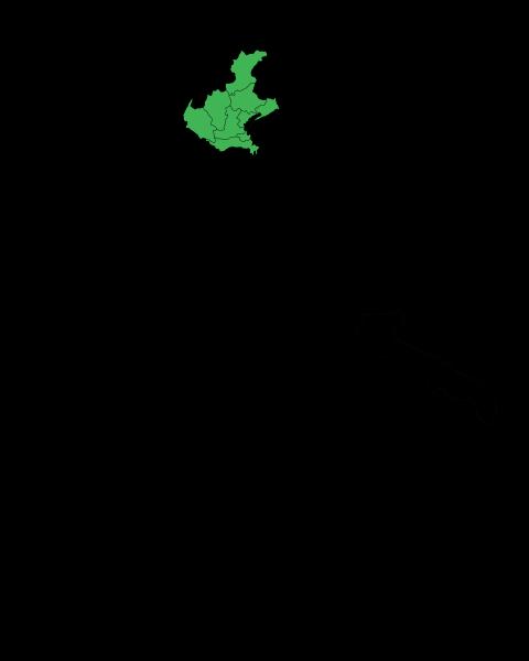 File:Map Region of Veneto.svg
