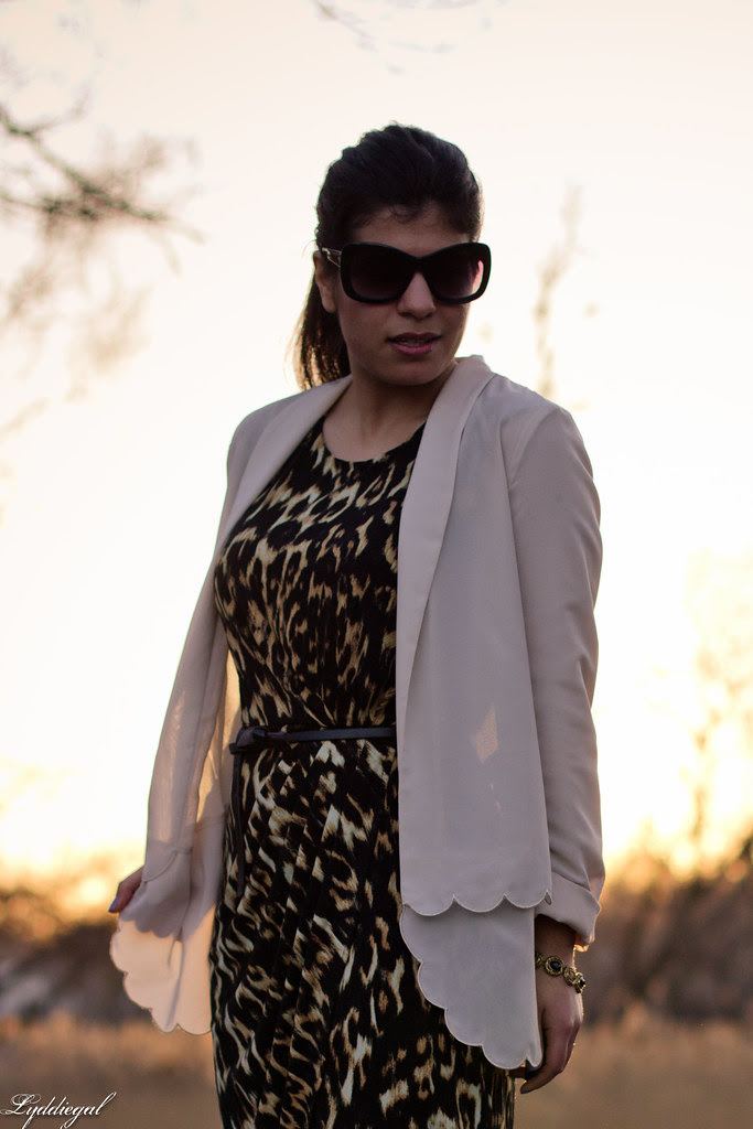 scalloped leopard-3.jpg