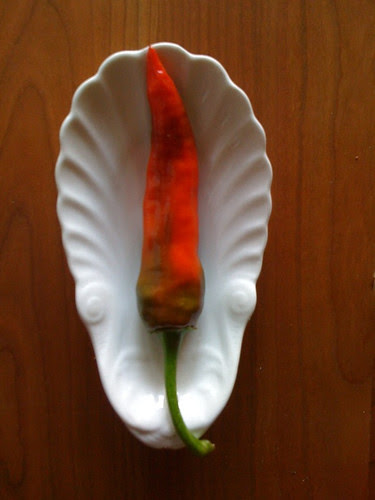 Fenir Chile Pepper