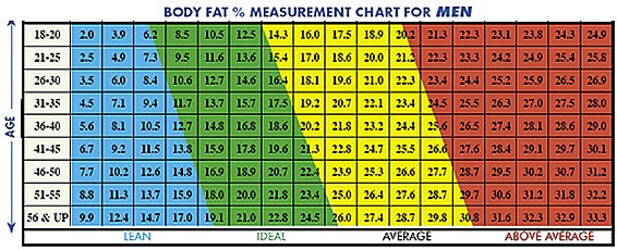 recommended body fat percentage chart