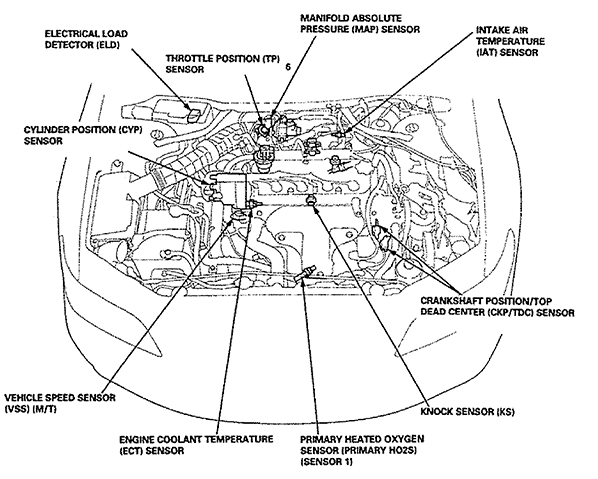 98 Honda Accord Wiring Diagram from lh5.googleusercontent.com