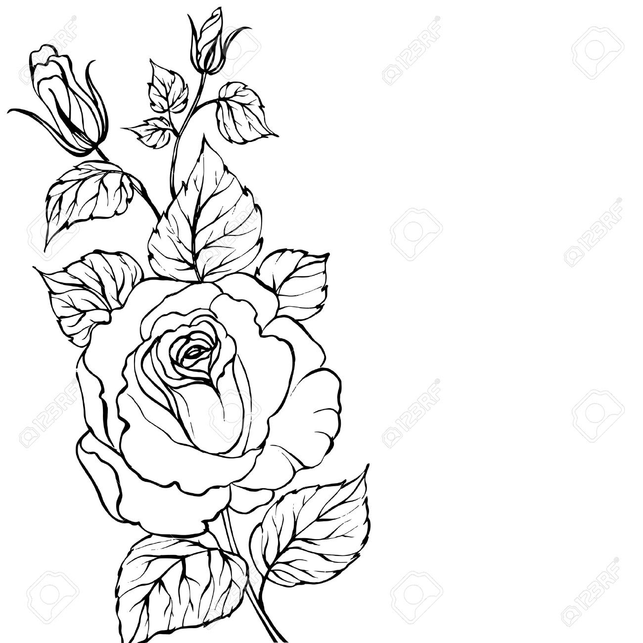 Simple Rose Line Drawing At Getdrawingscom Free For Personal Use