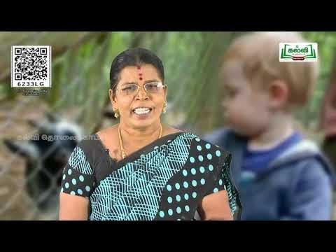 8th Tamil பால் மனம் பாடம் 9 பருவம் 3 பகுதி 1 Kalvi TV