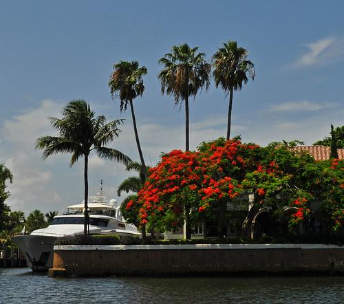 Boat Tour (42)