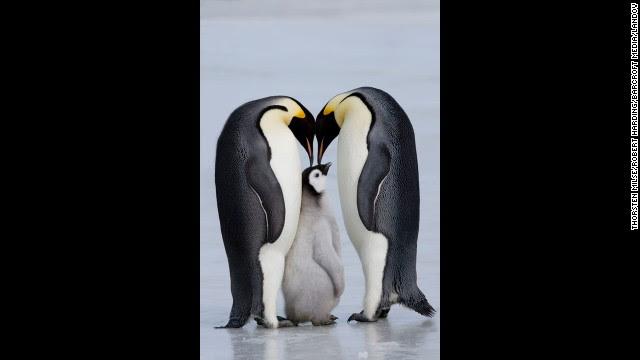 OPINIÓN: Asúmelo, ¡la monogamia es antinatural!