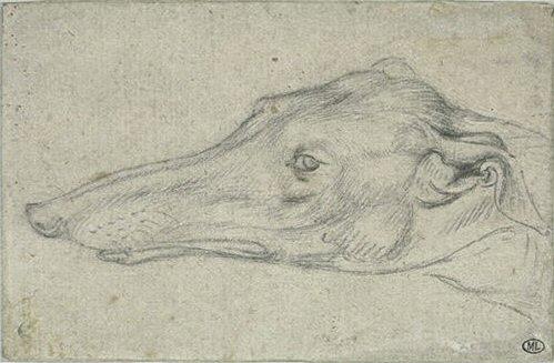 File:Pisanello - Codex Vallardi 2428.jpg