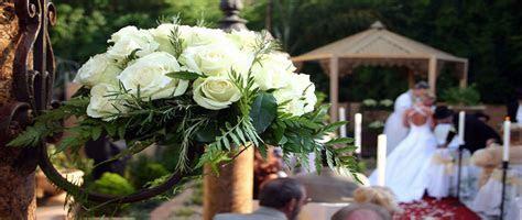 Diane Kane Barrie Ontario Wedding Officiant
