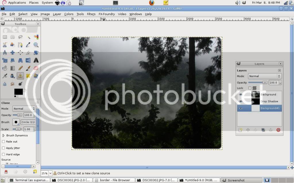 photo rounded_image.jpg