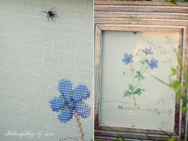Meadow Cranes-bill (Kazuko Aoki