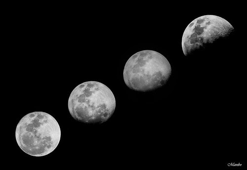 Amor por la Luna by Alejandro Bonilla