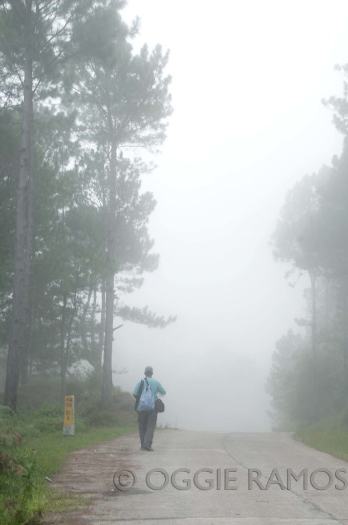 Sagada - Foggy Road to Danum