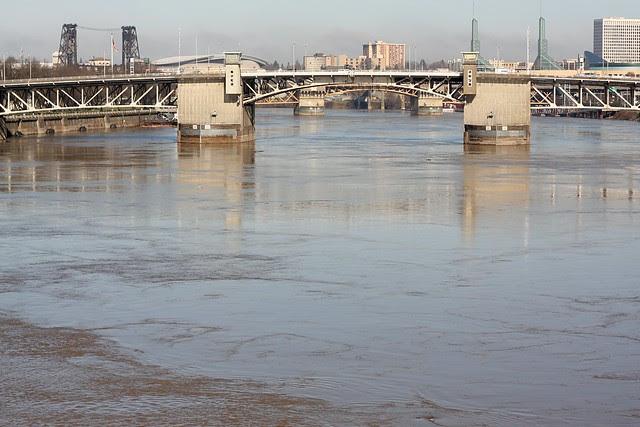 high water, willamette river