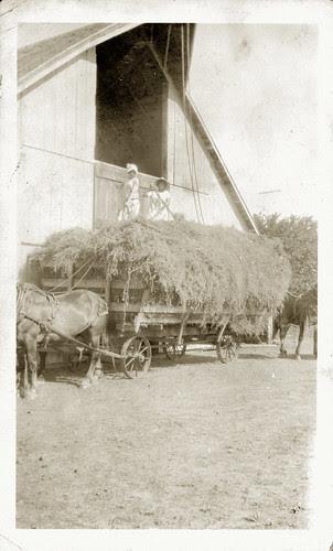 Two girls haying