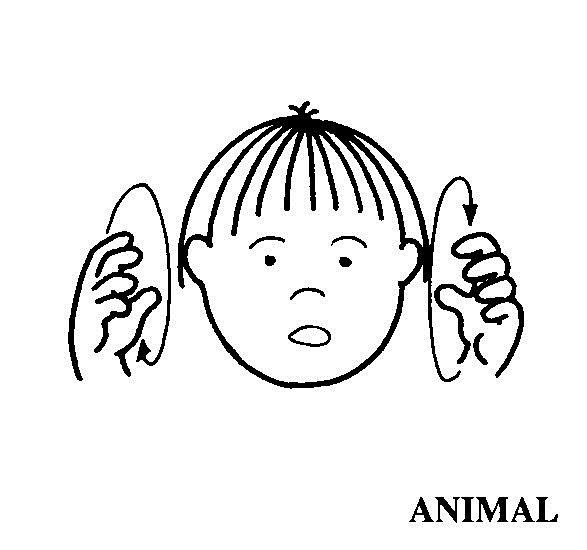 Resultado de imagen de animales lengua de signos