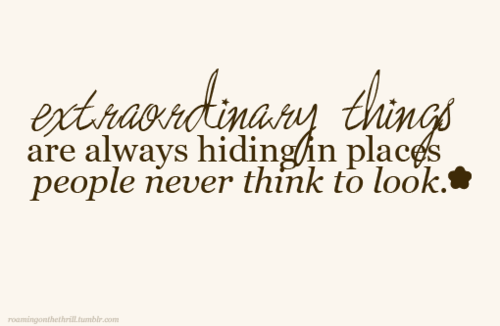 Extraordinary Things Are Always Hiding In Places People Never Think