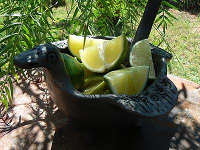 citron vert.jpg