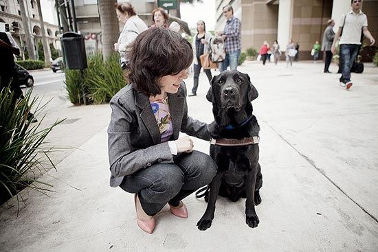 SP lança programa para treinar cães-guias; ONG promove uma ação no dia internacional do cão-guia