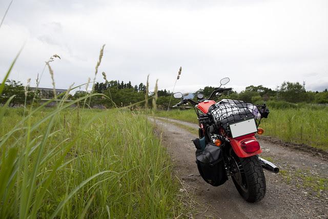 Harley Davidson XL 883R 060