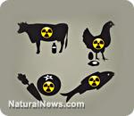 http://habwwe.files.wordpress.com/2011/04/foods_rad-animals.jpg