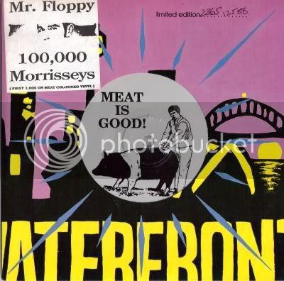 Mr. Floppy - 100,000 Morrisseys
