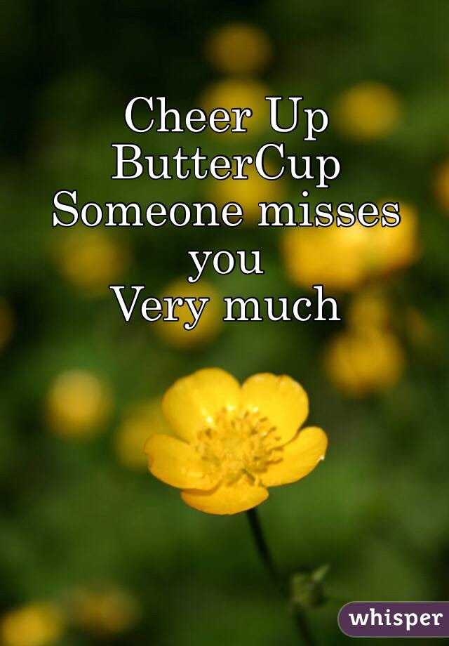 Cheer Up Buttercup Someone Misses You Very Much