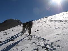 Scintillating Snow