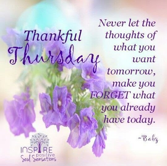 Inspiring Thankful Thursday Quote Pictures Photos And Images For